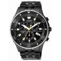 Citizen Chronograph BL5295-55E